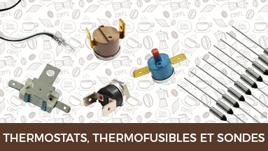 Thermostats, thermofusibles et sondes